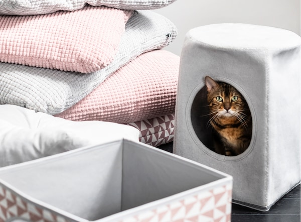 一只虎斑猫在 LURVIG 乐维格 灰色猫屋内向外张望,周围是柔软的粉色、灰色和图案宠物睡垫。