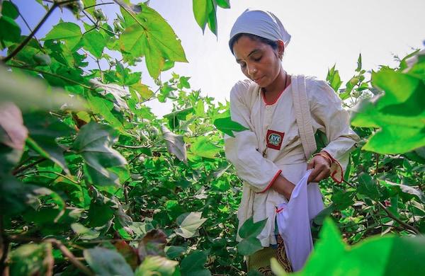 宜家致力于尽可能高效利用水资源。根据WWF的水资源管理模型,我们正在减少自身的经营机构和供应商对环境的影响,推行可持续水资源管理,包括棉花生产过程的水资源管理。