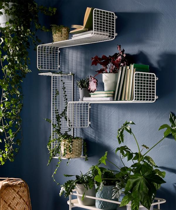 植物墙的多种展示方式:植物从上方垂悬、和书籍一起置于墙搁板上、放在植物架上。