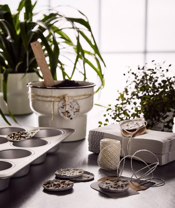 桌上摆着绿色植物,小蛋糕烤盘里放着自制种荚,米色花盆礼物上系着自制种荚。