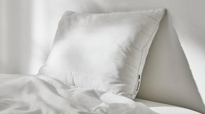记忆海绵和海绵枕头